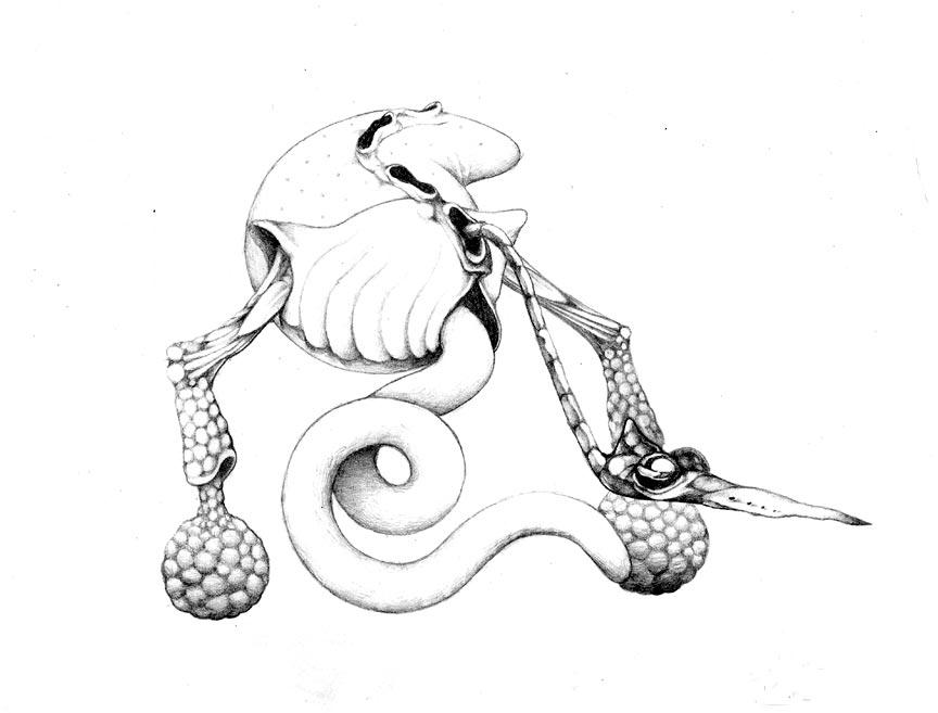 864x657 Surrealist Creature By Art Of Eric Wayne