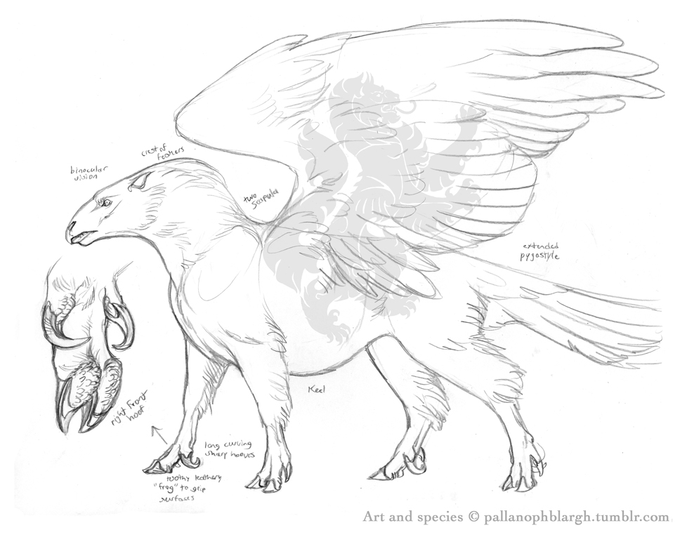 978x765 Winged Horse Reinvented By