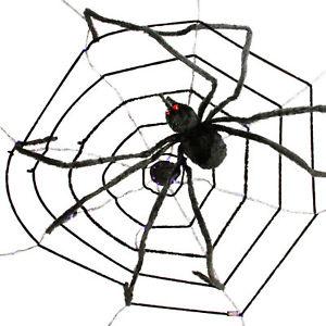 300x300 Halloween Haunters 6ft Creepy Black Spider Led Eyes Purple Web