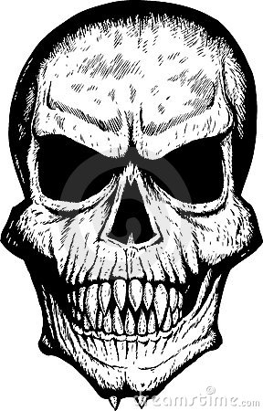288x450 Image From Front Skull