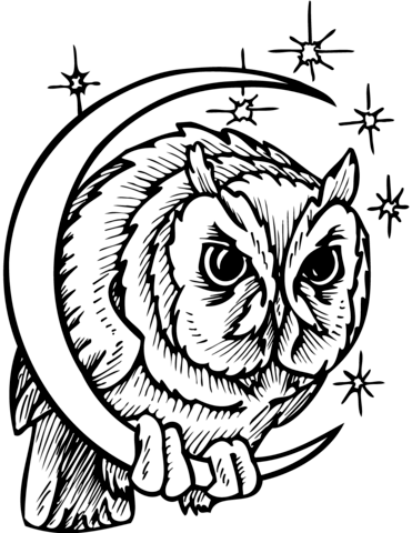 371x480 Owl In Crescent Moon Coloring Page Free Printable Coloring Pages