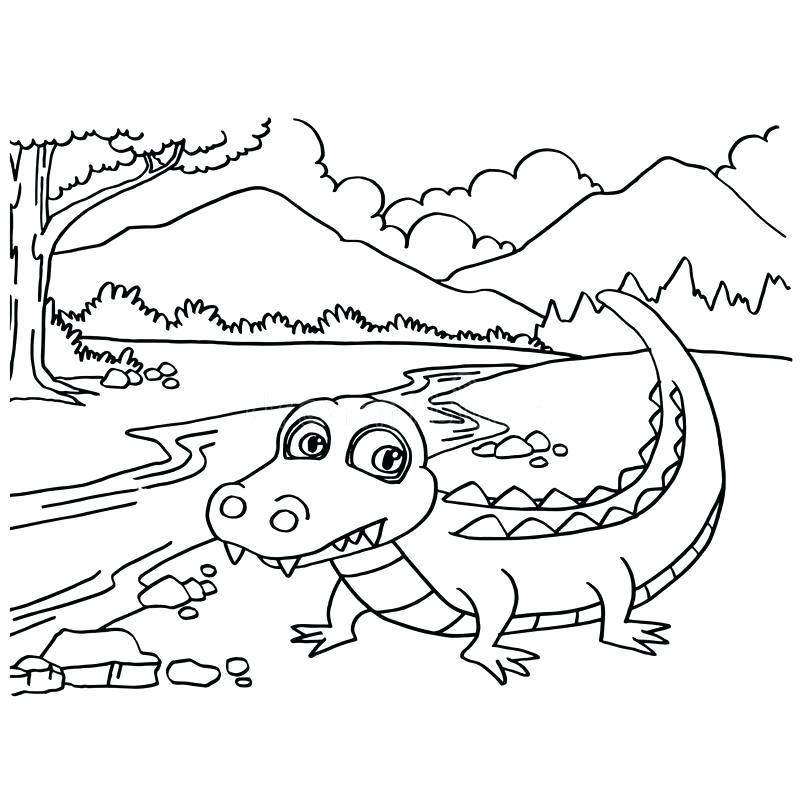 Crocodile Drawing