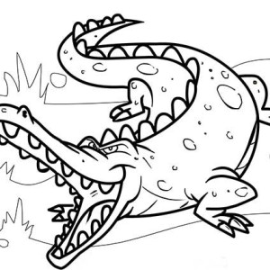 Crocodiles Drawing At Getdrawings Com Free For Personal Use