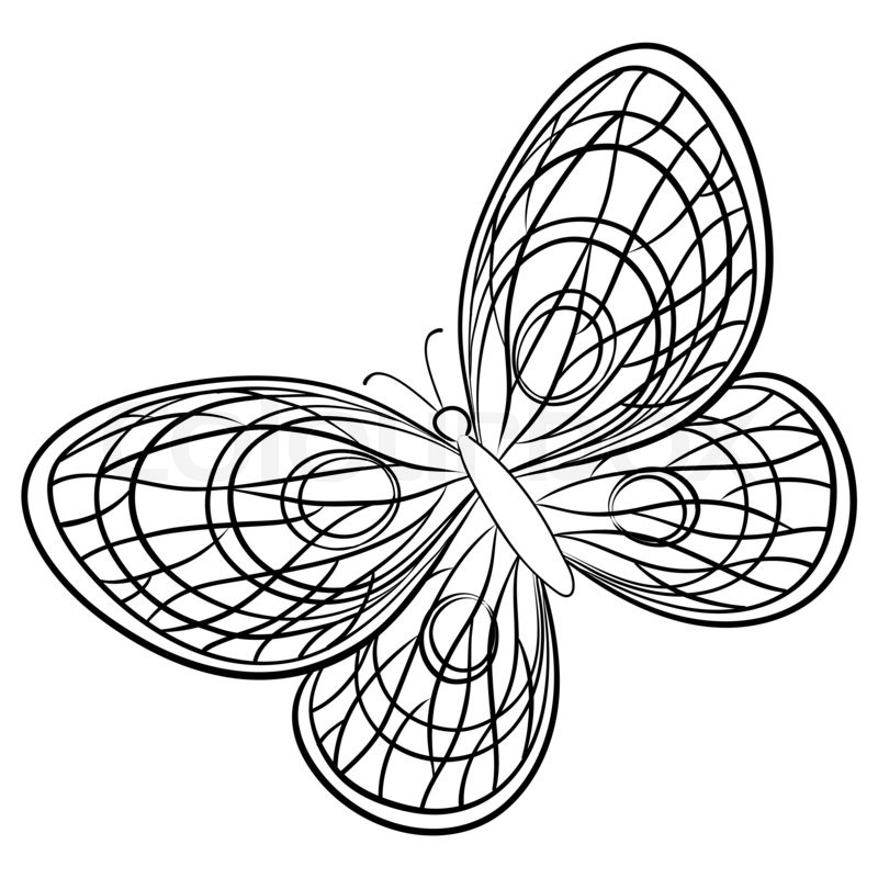 800x800 Butterfly, Hand Draw Monochrome Contours On A White Background