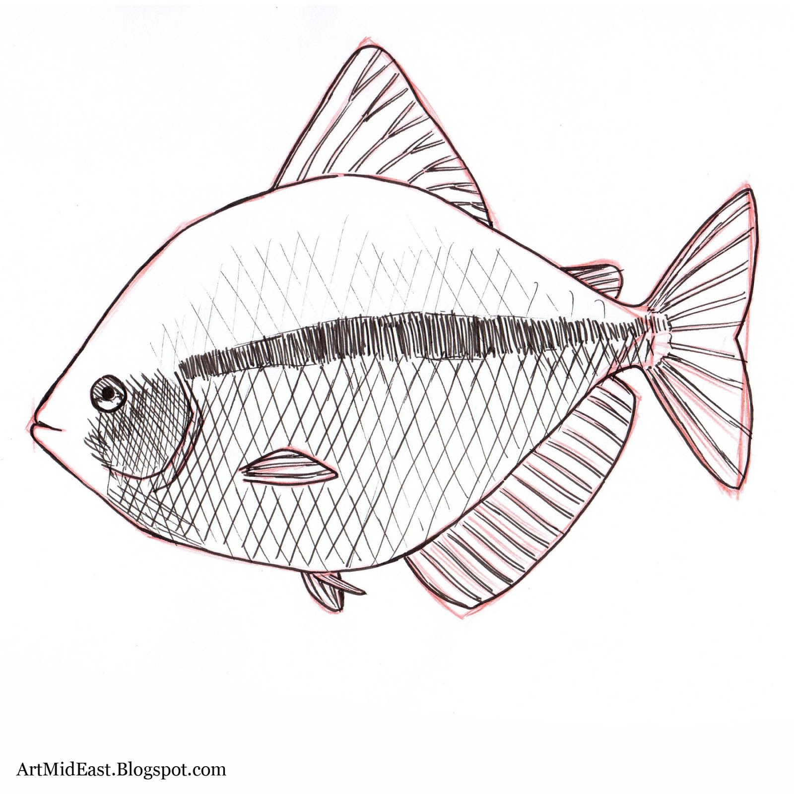 1600x1600 How To Draw A Fish Step By Step Drawing Lessons