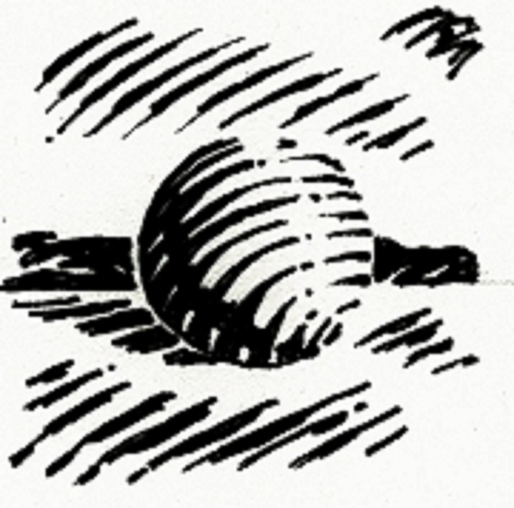 1800x1780 Lines Amp Values Basic Techniques