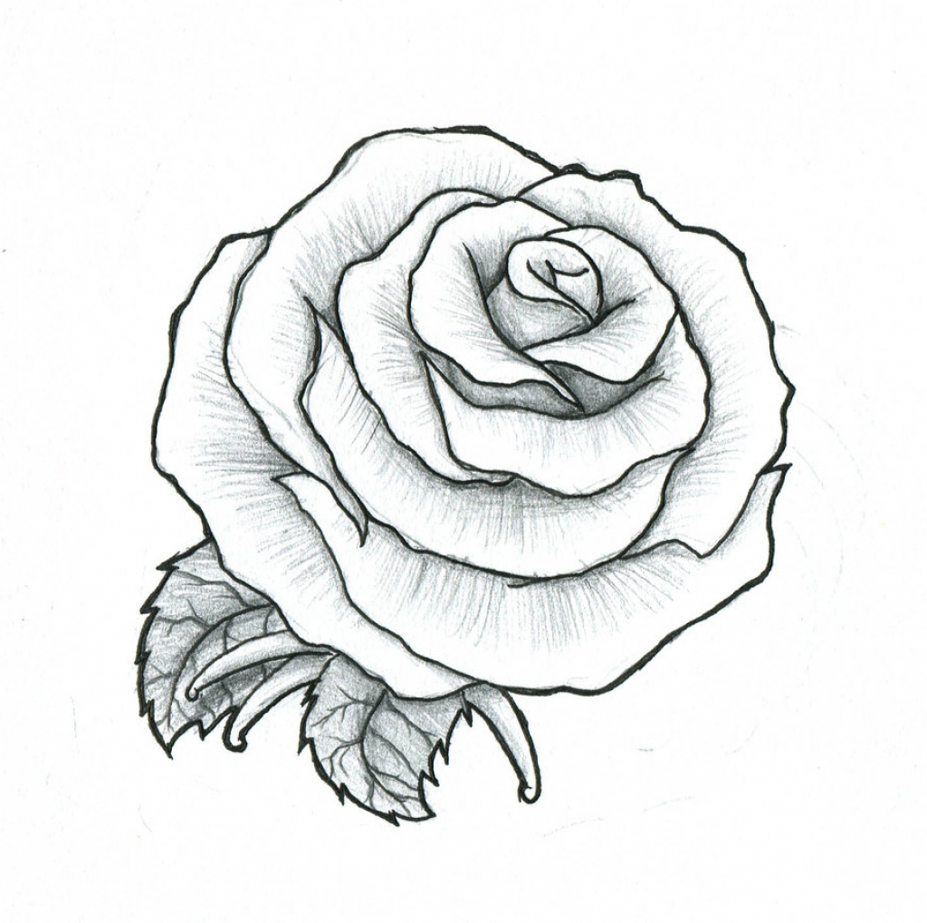 1024x1019 Design Neo Rose Drawing Tattoo With A Cross Traditional Skull