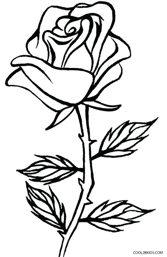 Crosses With Flowers Drawing At Getdrawings Com Free For Personal