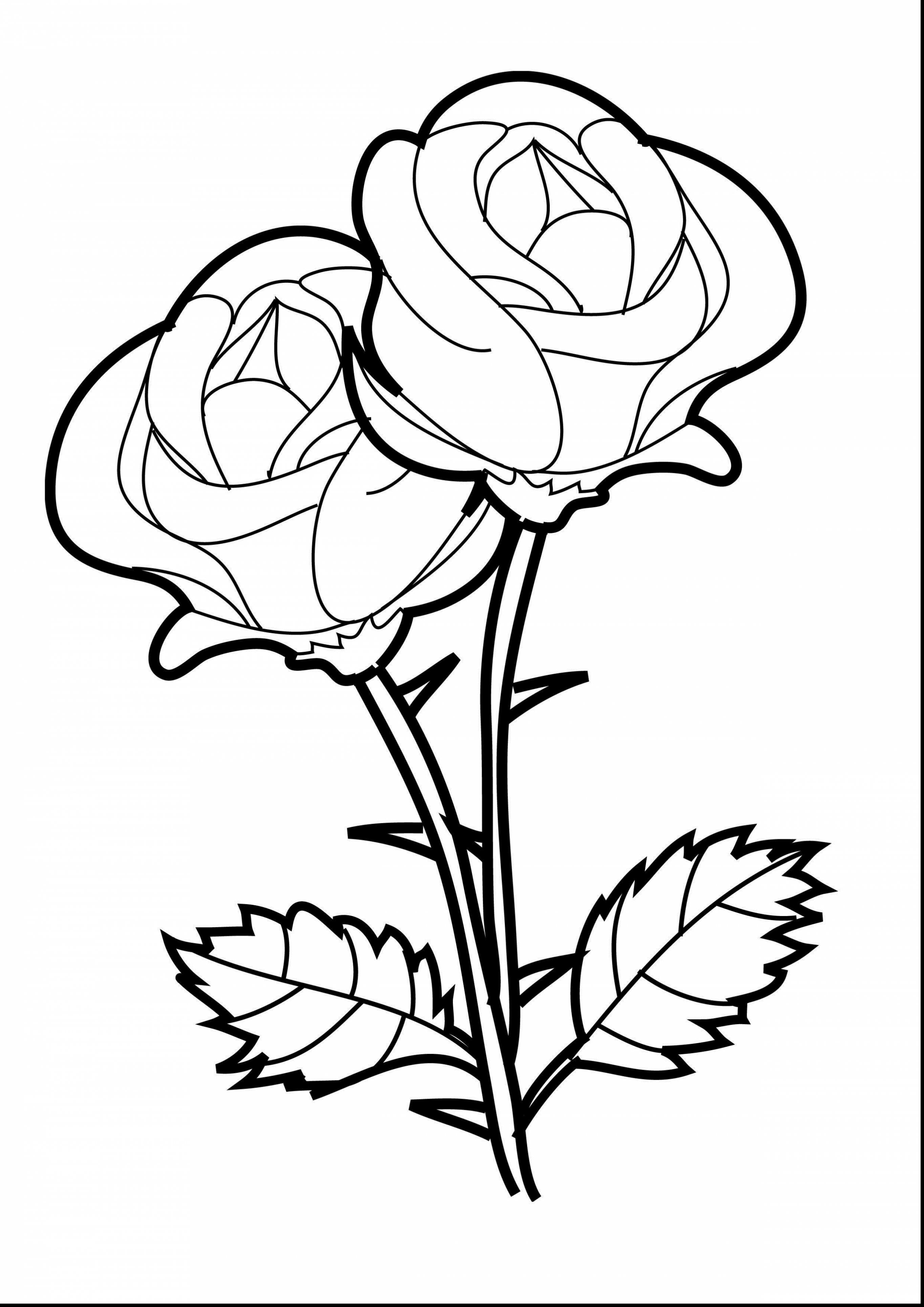 Rose Tattoo Coloring Pages - Bltidm