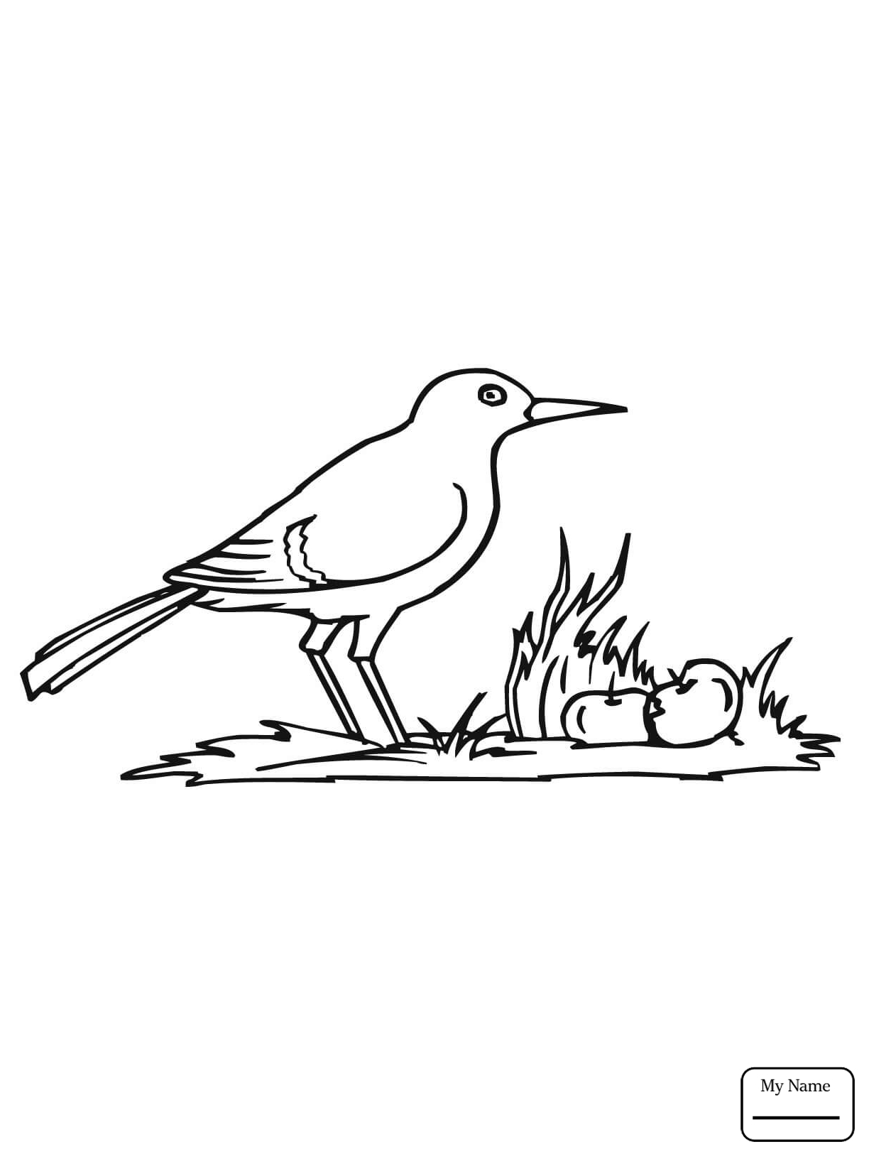1224x1632 Coloring Pages For Kids Birds American Crow Crows