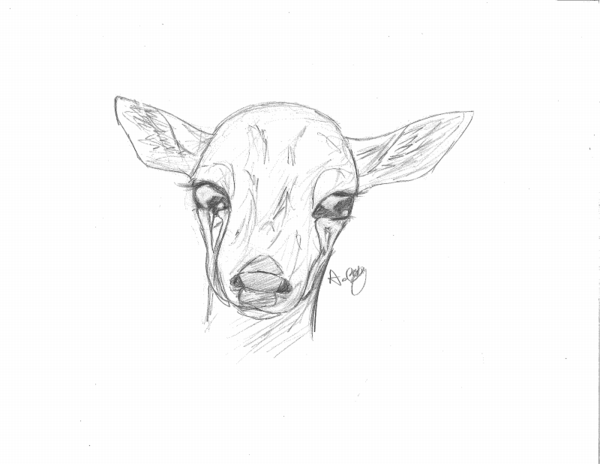 600x464 Crying Deer Thing [Request] By Thedragonofdeath