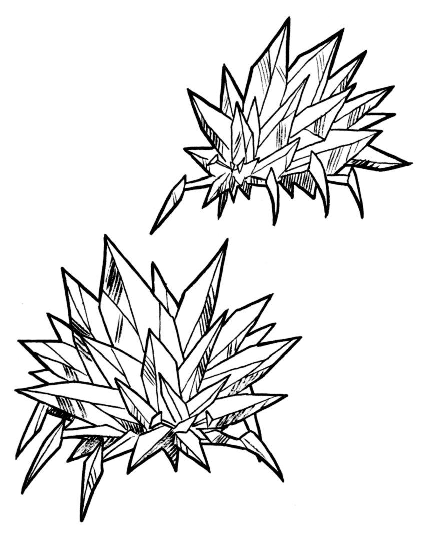 851x1065 Crystal barnacle Wookieepedia FANDOM powered by Wikia