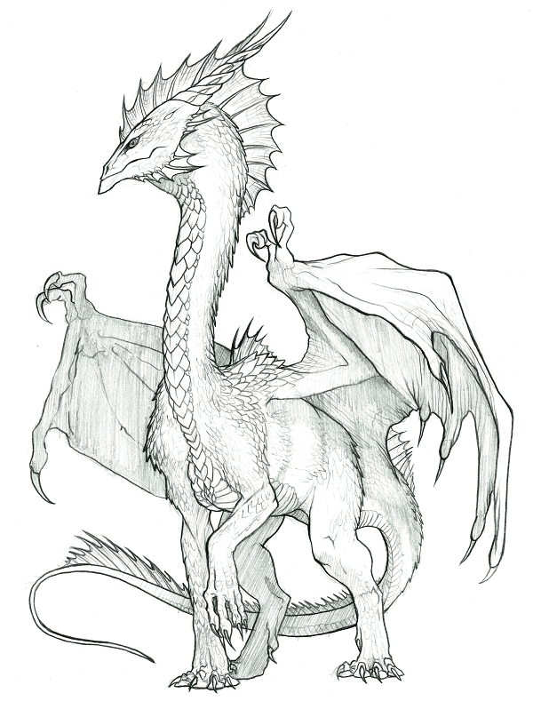 600x798 Sekkai Crystal Dragon by KaiserFlames on DeviantArt