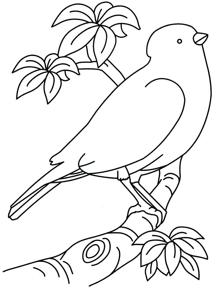 Cuba Drawing at GetDrawings.com | Free for personal use Cuba Drawing ...