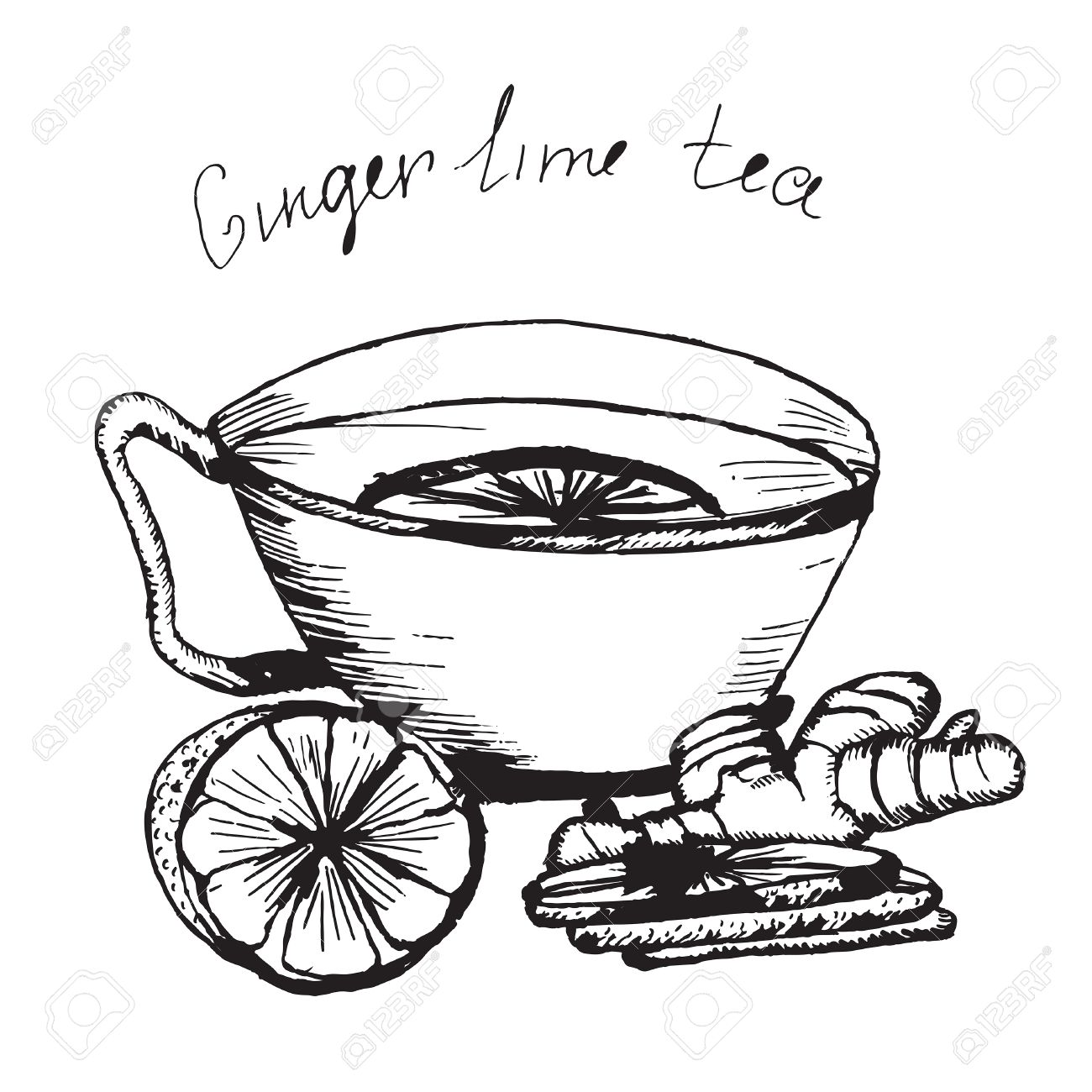 1300x1300 Hand Draw Vector Sketch. Illustration Cup Of Tea With Lime