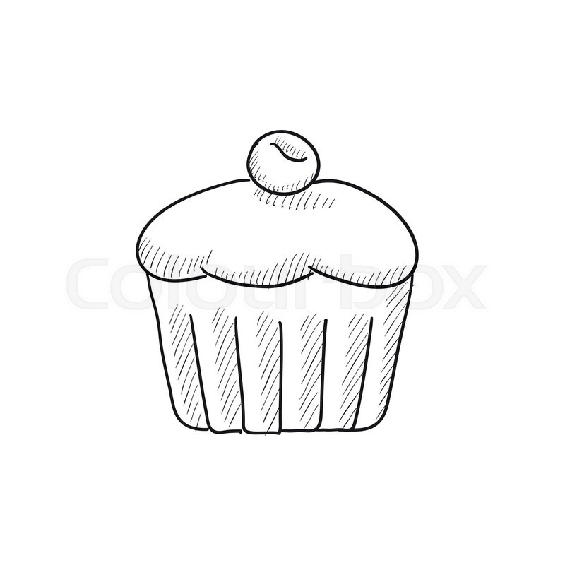 800x800 Cupcake With Cherry Vector Sketch Icon Isolated On Background