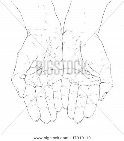 414x470 Cupped Hands Vector Amp Photo Bigstock