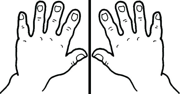 photo about Printable Hands identify Cupped Arms Drawing at  No cost for specific