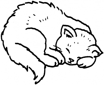 Curled Up Cat Drawing at GetDrawings.com | Free for personal use ...