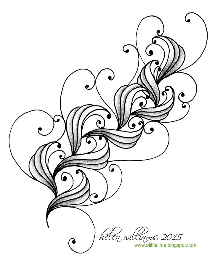 Curve Drawing