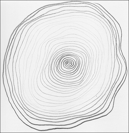 502x517 5 Line Control Exercises To Help You Draw More Accurate Curved