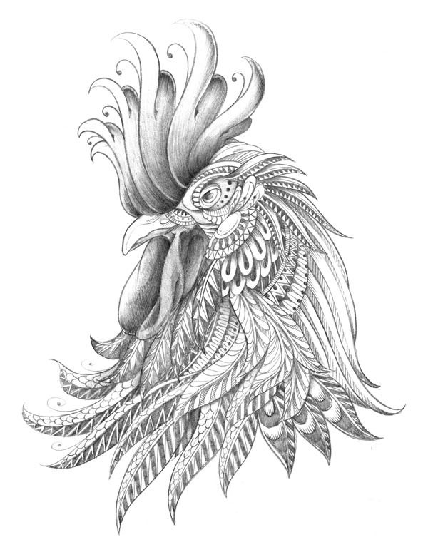Curved Feather Drawing