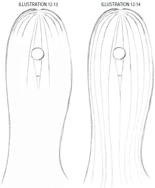 500x608 Comic Reference Long Straight Hair