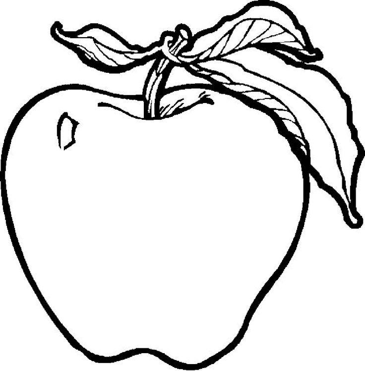 736x749 Sugar Apple Clipart Black And White