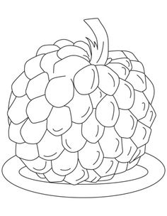 236x304 Custard Apple Clipart Black And White Clipart Station