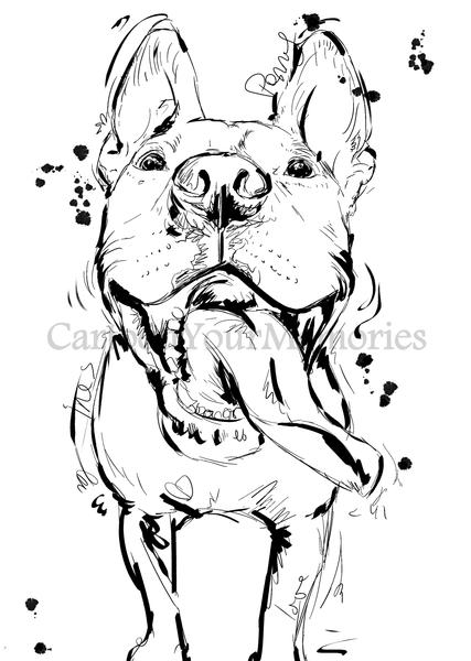 427x600 Custom Pet Sketch Cartoon Your Memories