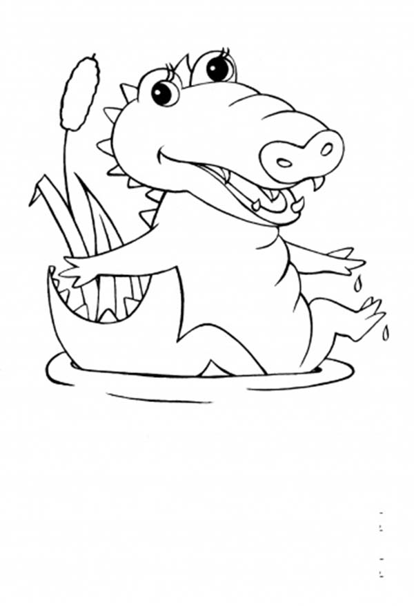 600x877 Cute Alligator Coloring Pages
