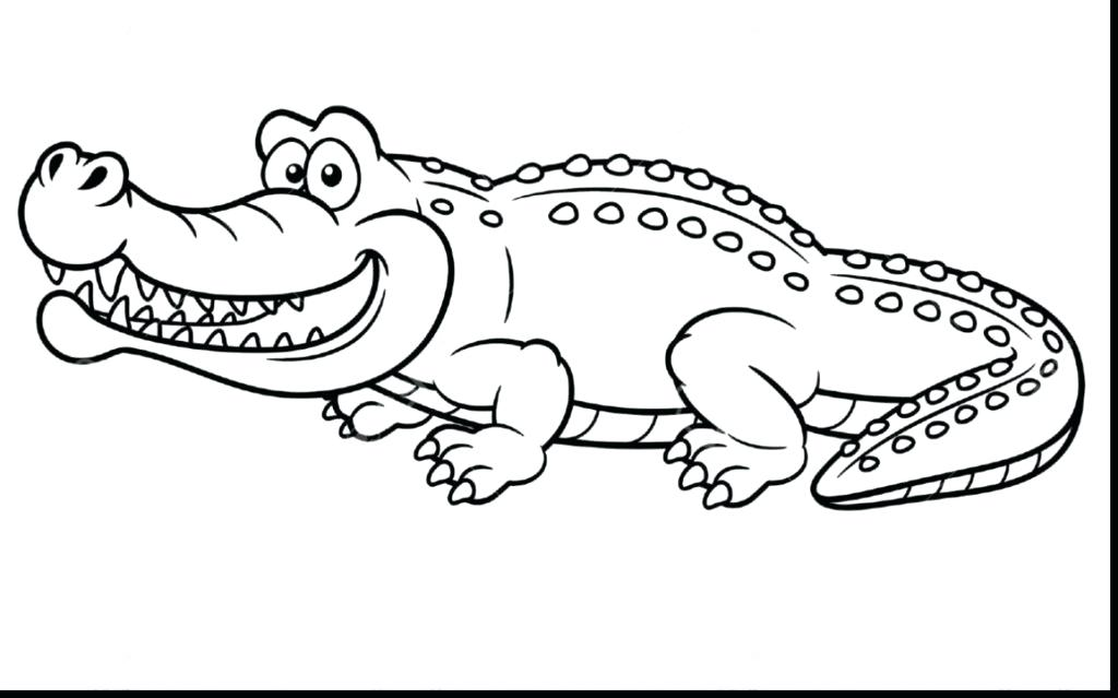 1024x639 Small Alligator Coloring Pages Just