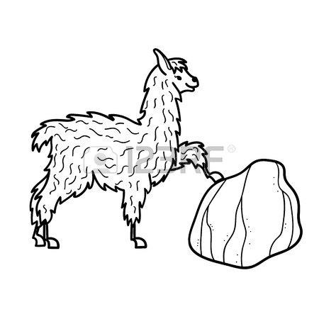 Cute Alpaca Drawing