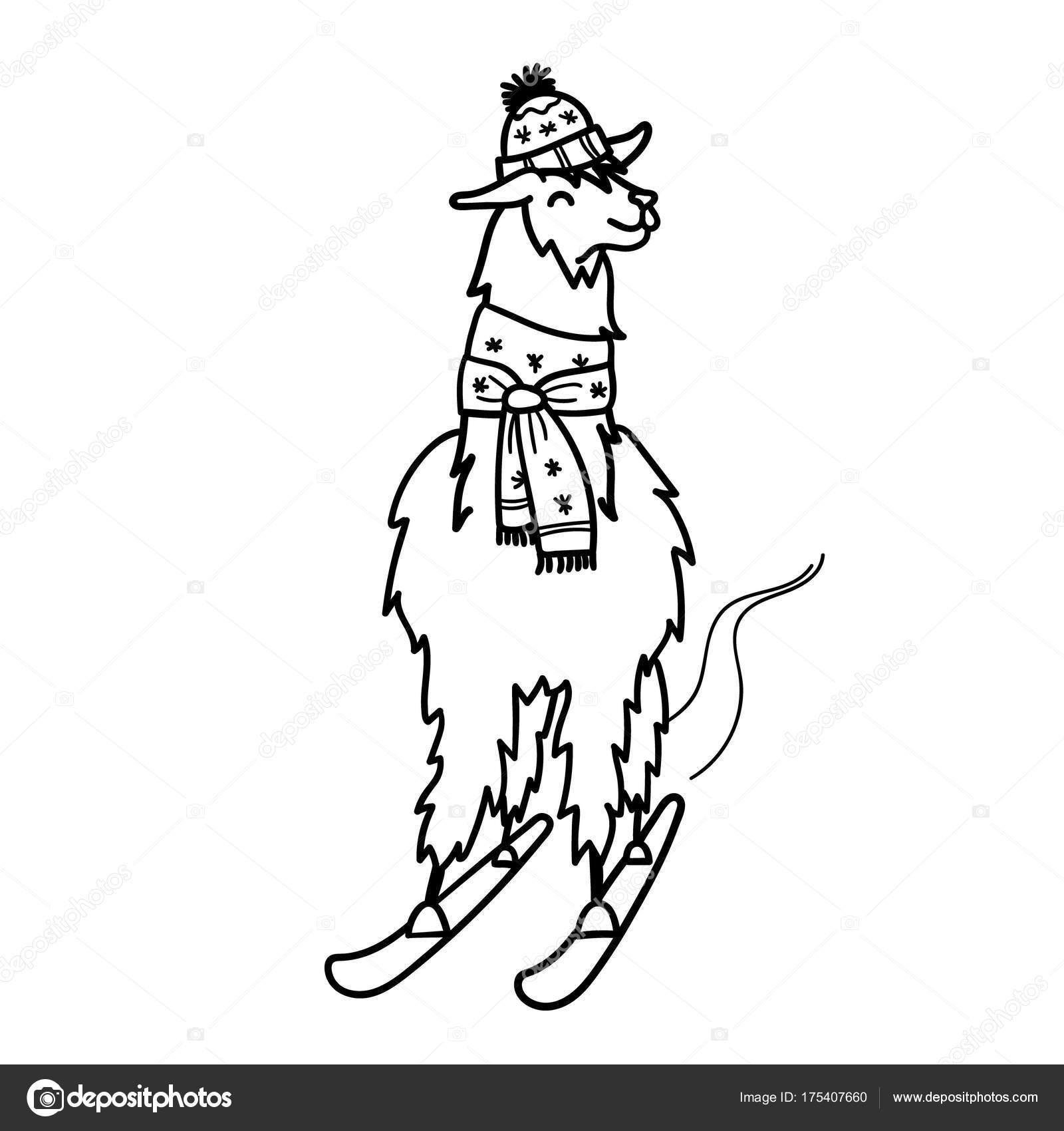 1600x1700 Vector Illustration Of Cute Character South America Lama