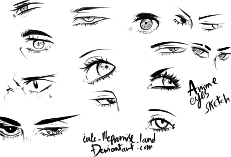 800x544 Anime Eyes Reference By Into Thepromise Land