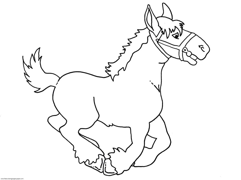 1024x768 Baby Horse Coloring Pages Bebo Pandco