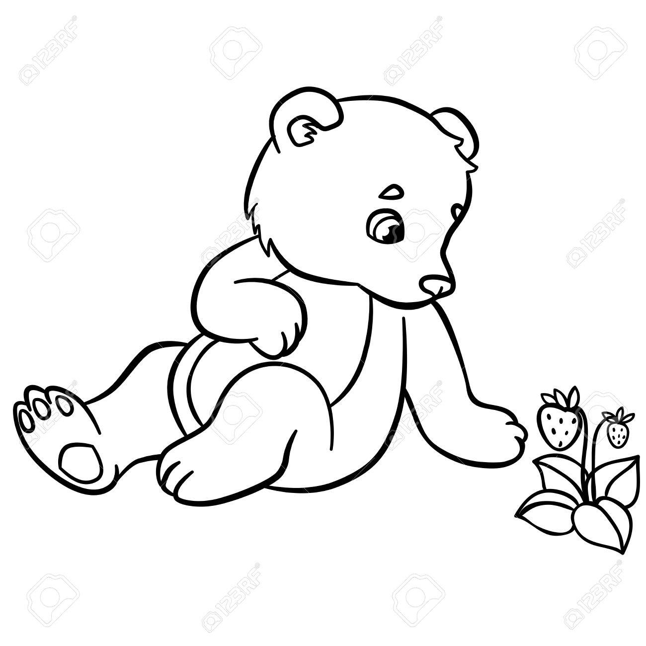 1300x1300 Coloring Pages. Wild Animals. Little Cute Baby Bear Looks