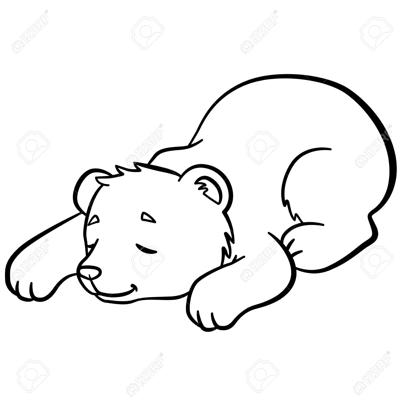 1300x1300 Coloring Pages. Wild Animals. Little Cute Baby Bear Sleeps. It Is