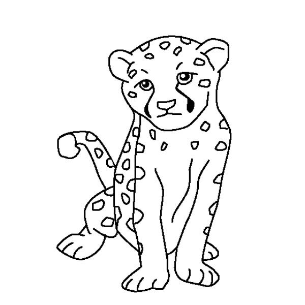 600x600 Cute Baby Cheetah Coloring Page