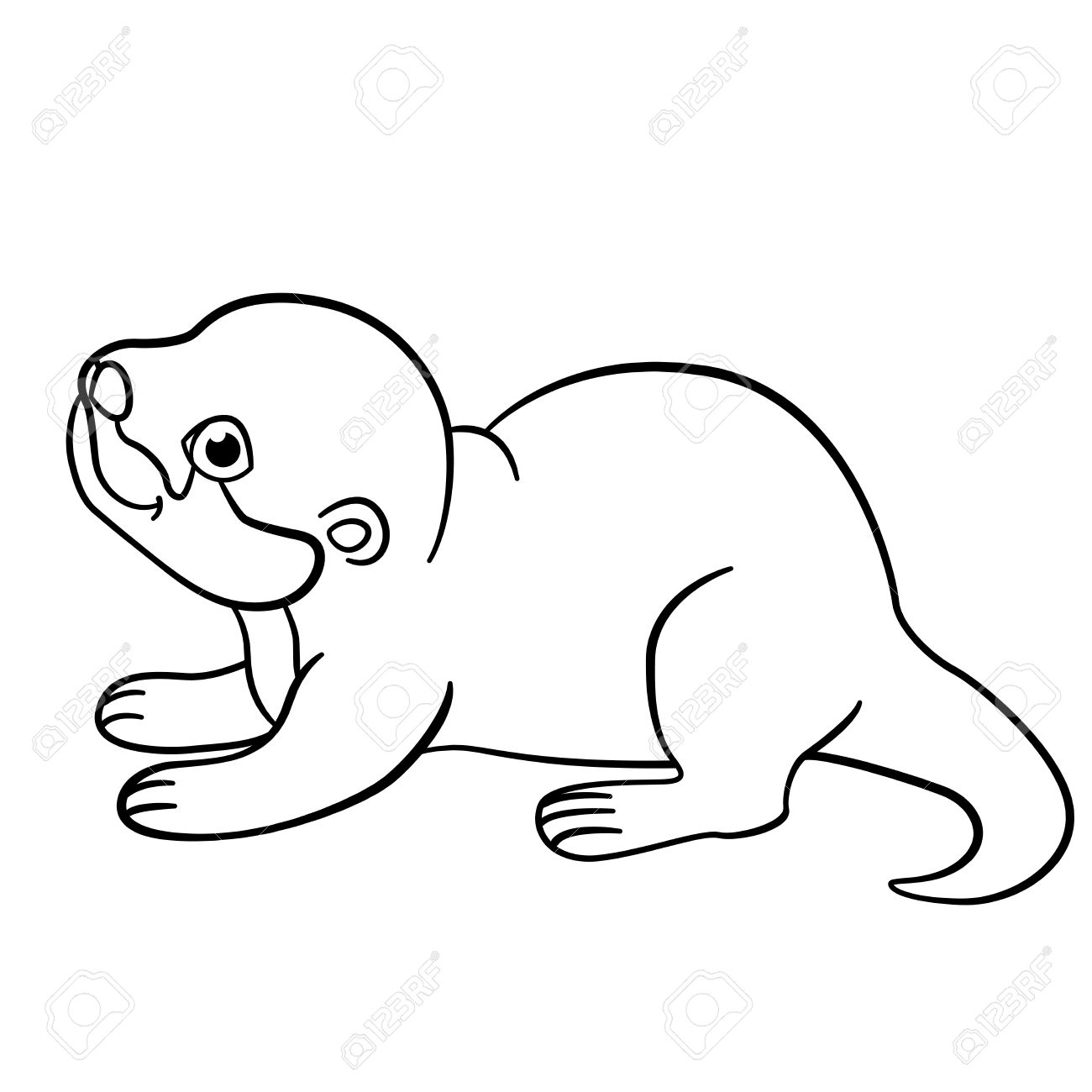1300x1300 Coloring Pages. Little Cute Baby Otter Stands And Smiles. Royalty
