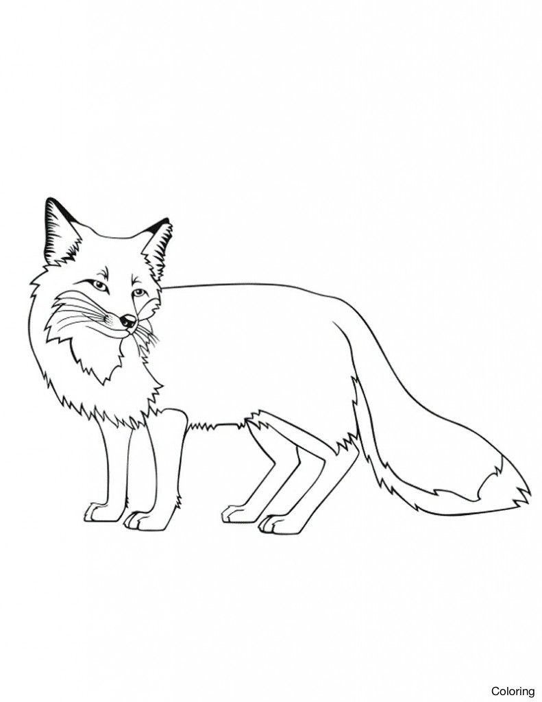 791x1024 Coloring Pages For Teenage Girl Also Cute Baby Fox Plus Printable