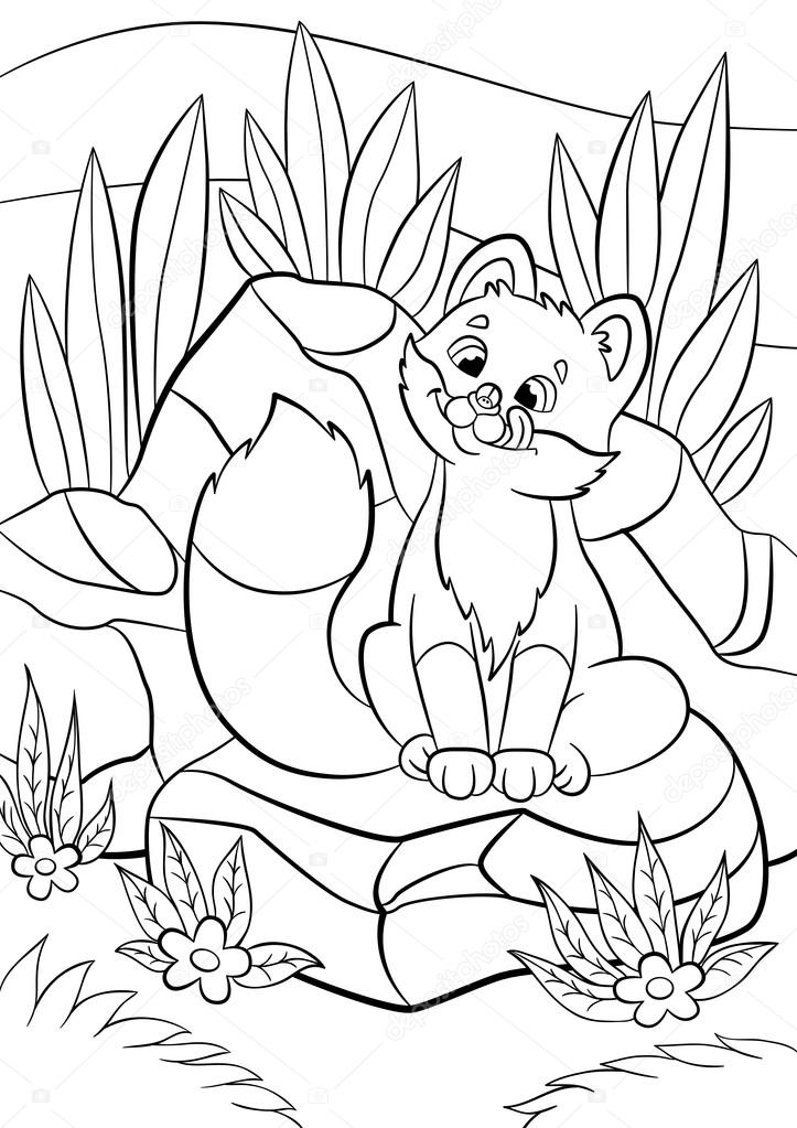 723x1023 Coloring Pages. Wild Animals. Little Cute Baby Fox Looks