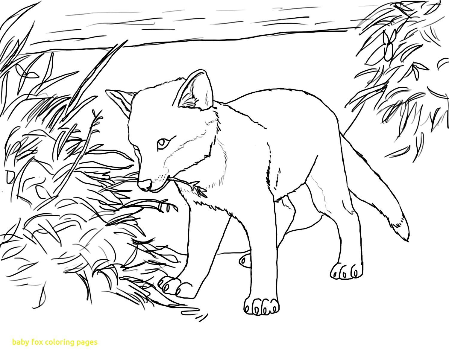1500x1200 Baby Fox Coloring Pages With 8 Pics Cute Baby Fox Coloring Pages