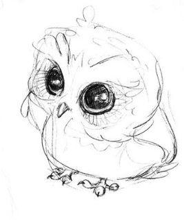 Cute Baby Owl Drawing