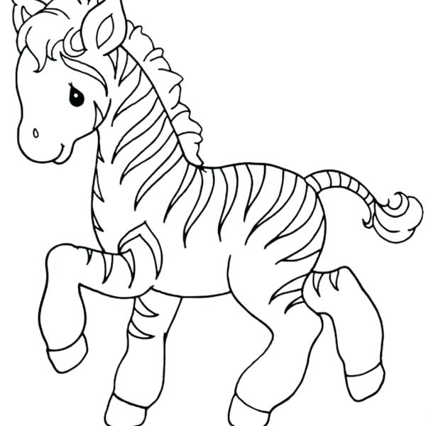 600x600 Baby Zebra Coloring Pictures In Fancy Draw Page Pages Sweet Little