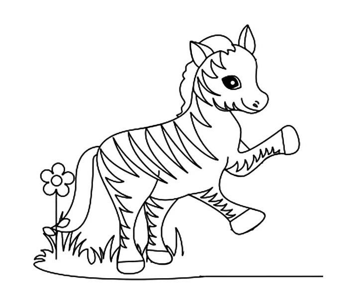 700x619 40 Zebra Templates