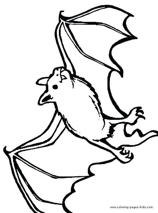 550x740 Bat Color Pages Drawn Bat Color 8 Cute Bat Coloring Pictures