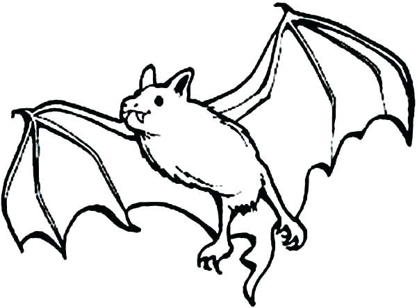 600x444 Bat Coloring Page Bats Coloring Pages Cute Bat Coloring Pages Bats