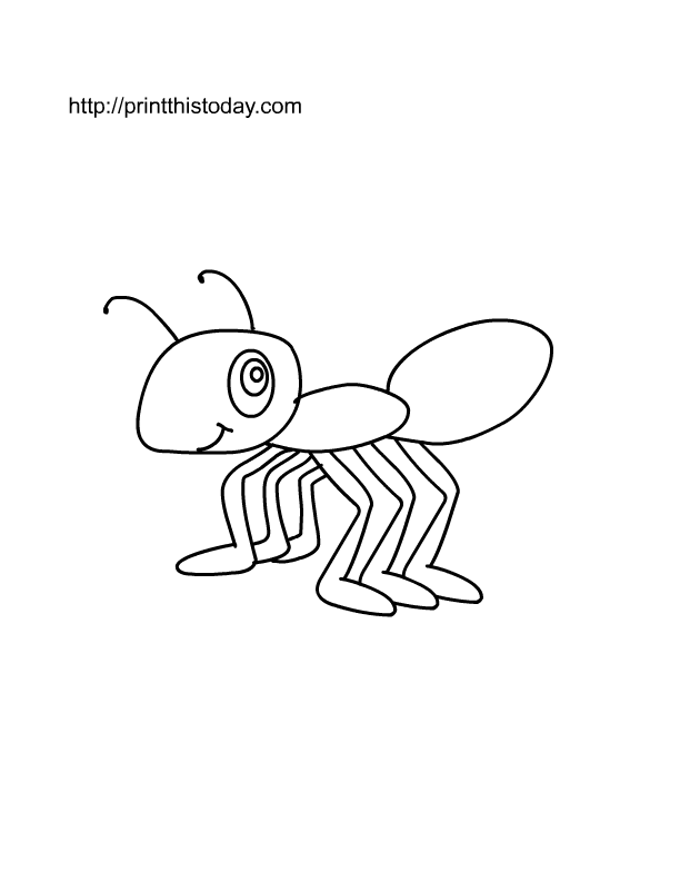 612x792 Free Printable Insects Coloring Pages
