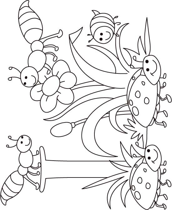 550x672 Top Insect Coloring Pages Free Of Cute Insects